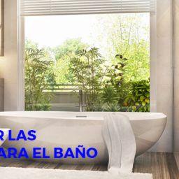 elegir ventana para el baño